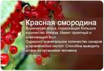 Превью AOTBVYGchIU (590x400, 152Kb)