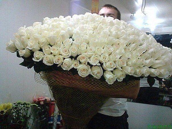 белые розы (604x453, 64Kb)