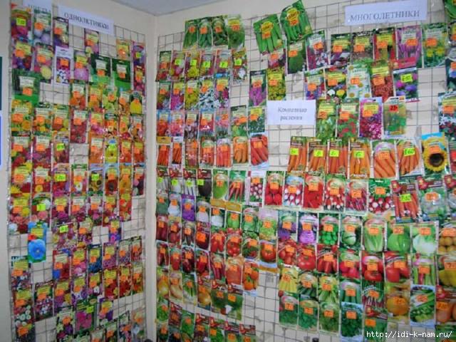 купить качественные семена недорого в Украине в интернет магазине Урожай/4682845_jMyMzYtYT (640x480, 248Kb)