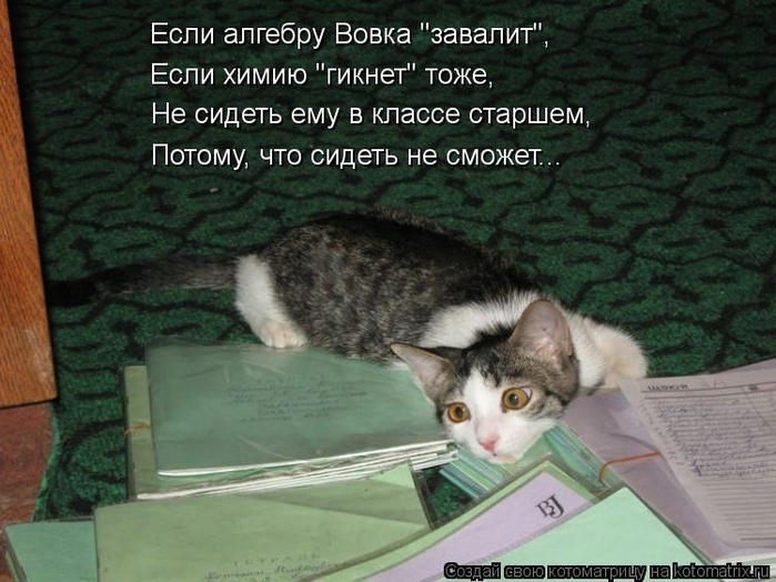 kotomatritsa__M (700x524, 251Kb)