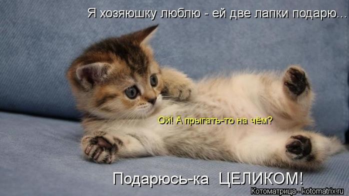 kotomatritsa_Lq (700x392, 172Kb)