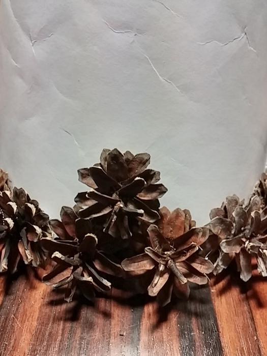 Новогодняя елочка из сосновых шишек (10) (525x700, 217Kb)
