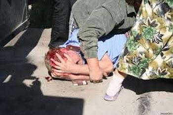 Раненный Беркут (350x233, 43Kb)