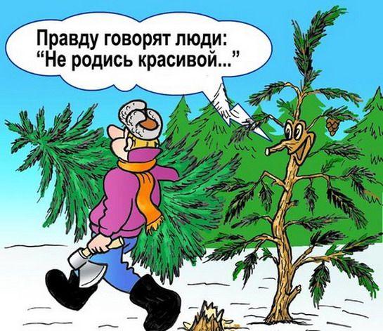 Анекдоты для детей о новом годе