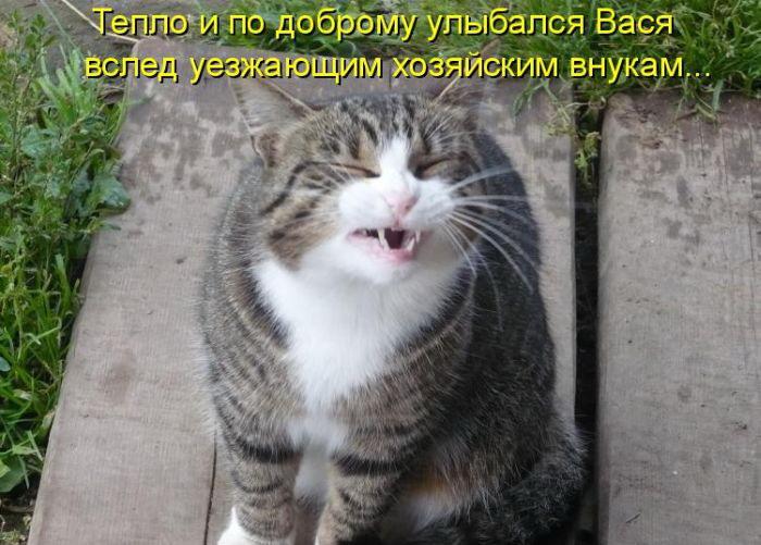 1363787985_kotomatrica-49 (700x501, 92Kb)