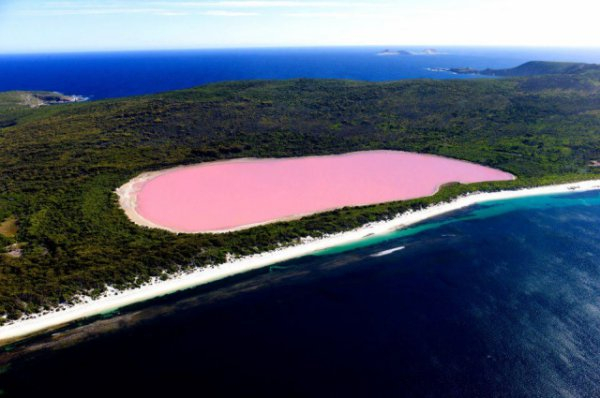розовое озеро 10 (600x398, 174Kb)