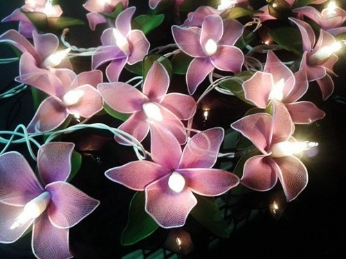 20_purple_color_orchid_flowers_fairy_lights_string_home_decor_c44c24d2 (500x375, 107Kb)