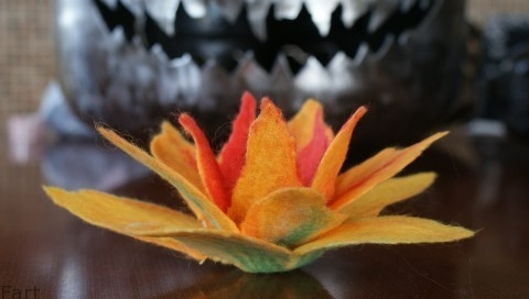 Цветы в технике мокрого валяния из шерсти. Фото мастер-класс (16) (480x272, 62Kb)
