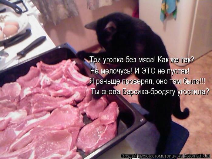 Котоматрица - 2013 kotomatritsa_8_ (700x524, 242Kb)
