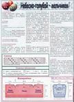 Превью 8 (507x700, 326Kb)