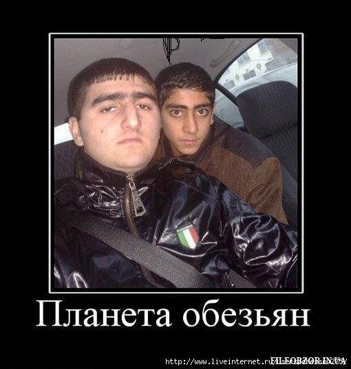 Ленобласть: азер выстрелил в лицо жителю Кудрово