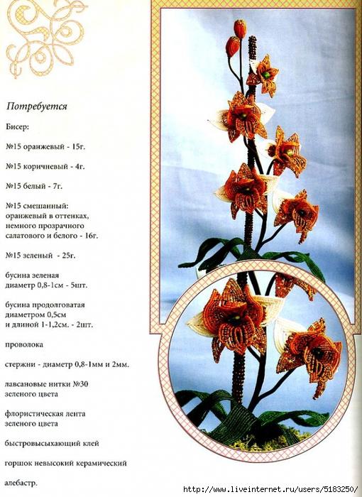 5183250_orhideyaj (510x700, 302Kb)