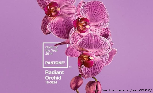 pantone-color-of-the-year-2014-radiant-orchid (640x390, 137Kb)