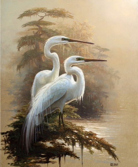 5053532_Elegant_Feathers_I (480x583, 76Kb)