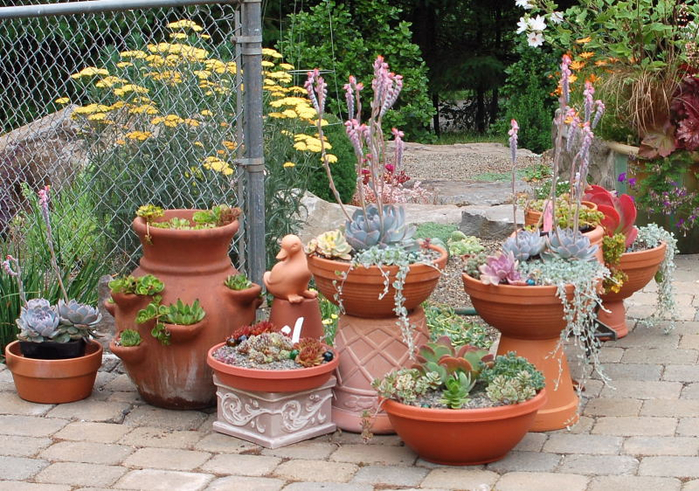container-gardening-ideas-for-small-gardens - копия (700x491, 496Kb)