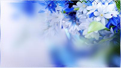 синий-об (403x228, 41Kb)