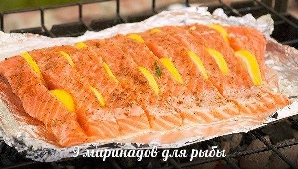 рыбаКр (500x340, 57Kb)