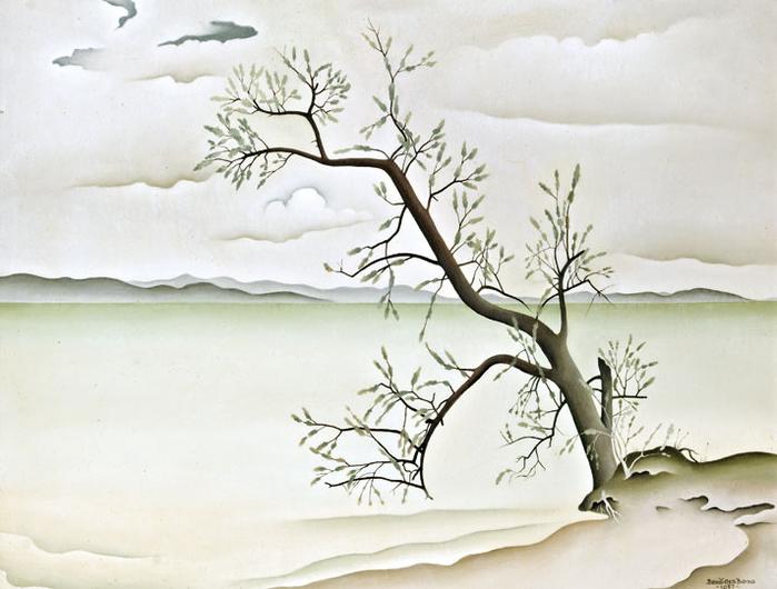 Olajfa a Balaton partján, 1957 (700x530, 291Kb)