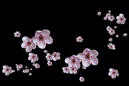 0_c9b4a_8ab9ce9d_L (400x232, 79Kb)