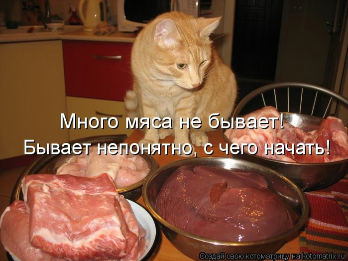 kotomatritsa_U (700x524, 246Kb)