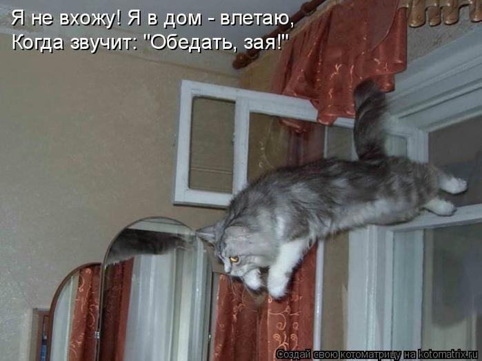 kotomatritsa_vo (700x524, 200Kb)