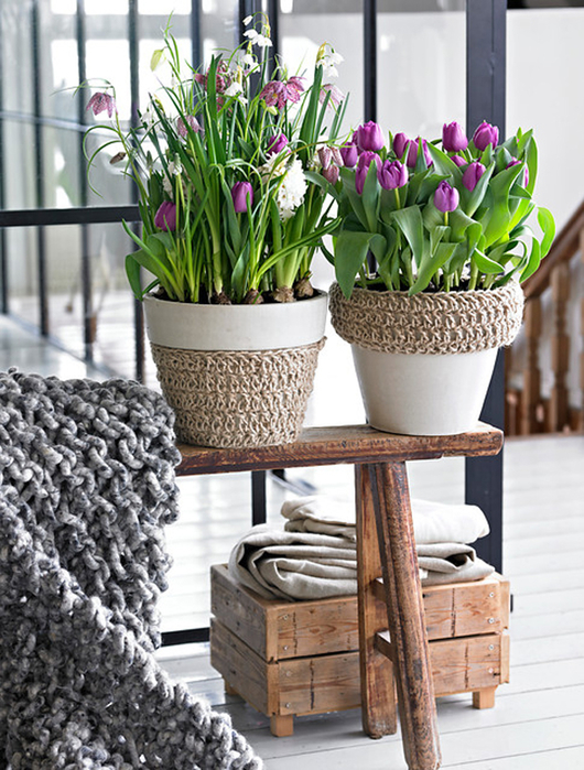 Луковичные цветы в интерьере. Подборка красивых фотографий (20) (530x700, 457Kb)