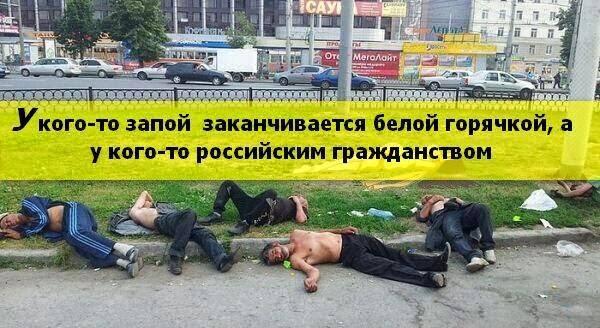 Беглый Царев жалуется, что у него угнали автомобиль в оккупированном Крыму - Цензор.НЕТ 1291