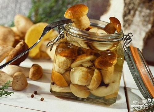 как и сколько варить белые грибы/5281519_marinovannie_belie_gribi64175 (500x363, 170Kb)