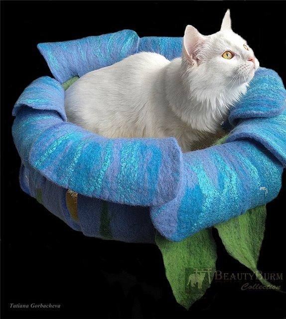 Домик для кошек самое интересное в