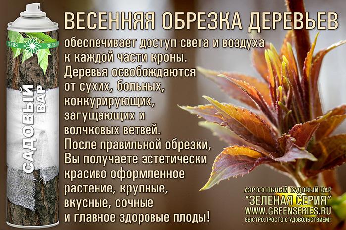 цветов, удобрение, аэрозоль для цветов, комнатных растений, комнатное растение, комнатные растение, комнатные цветы уход, комнатные растения и цветы, комнатный цветок, комнатные цветы и растения, для комнатных растений, домашние растения, растения для офиса, цветы в горшках, цветы в доме, домашние цветы, цветы для дома, цветы домашние, озеленение офиса, комнатные растения уход, почва, грунт, земля для цветов, торф, минеральные удобрения, какие удобрения, куплю удобрения, удобрения купить, фосфорные удобрения, гербициды, удобрения для цветов, цветы удобрения, подставка для цветов, горшки для цветов, подставки для цветов, цветы комнатные, комнатные цветы,    садовый вар:  Зеленая серия, садовый вар, обрезка деревьев, деревья для сада, деревья плодовые, лечение деревьев, аэрозоль садовый вар для ухода за растениями, вар садовый, лечение деревьев, консерватор для, садовый вар замена, зеленая серия аэрозоль, аэрозоль для растений, для растений, болезни растений, гидрогель, уход за растениями, жидкое удобрение, аэрозоль для ухода за растениями, садовый вар для сада, садовый вар аэрозольный, садовый вар аэрозоль, деревья для сада, деревья плодовые, лечение деревьев, садовый вар замена, аэрозоль садовый вар для ухода за растениями  Садовый вар больше Зеленая серия, садовый вар, обрезка деревьев, деревья для сада, деревья плодовые, как прививать яблоню, прививаем яблоню, привой сливы, привой ялони, деревья после прививки, чем обработать срез, состав садового вара, лечение деревьев, аэрозоль садовый вар для ухода за растениями, вар садовый, лечение деревьев, консерватор для, садовый вар замена, зеленая серия аэрозоль, аэрозоль для растений, для растений, болезни растений, уход за растениями, аэрозоль для ухода за растениями, садовый вар для сада, садовый вар аэрозольный, садовый вар аэрозоль, деревья в саду, деревья плодовые, лечение деревьев, садовый вар замена, аэрозоль садовый вар для ухода за растениями,/3041158_GS_obrezka_01 (700x466, 217Kb)