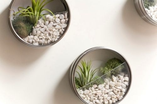 500x333-images-stories2-391-Stones_2-diy-vertical-terrarium-wedding-favors-01 (500x333, 65Kb)