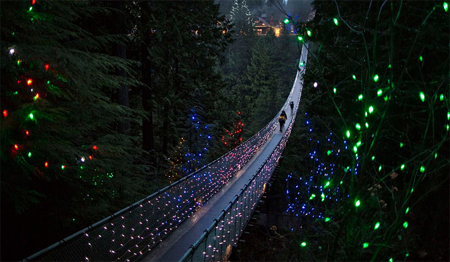 3925073_CapilanoSuspensionBridgeinNortVanco (650x379, 97Kb)