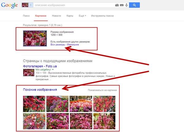 Откроется новая вкладка браузера с результатами поиска Google