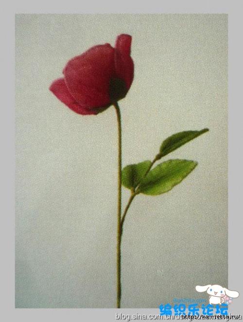 цветы из капрона. мастер-класс (8) (500x663, 215Kb)