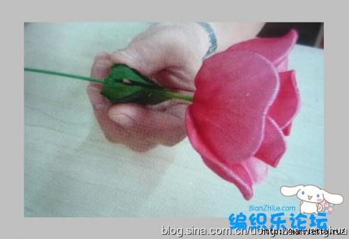 цветы из капрона. мастер-класс (10) (500x342, 77Kb)