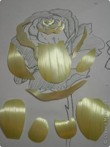 Rosa encantador.  Aplicación de paja.  Clase magistral (19) (360x480, 106Kb)