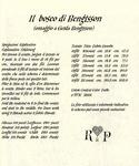 Превью Il Bosco di Bengtsson 7_Renato Parolin (584x700, 363Kb)