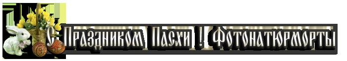3166706_1110133 (700x123, 70Kb)