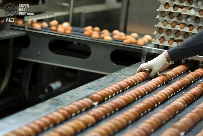 пасхальные яйца фото 1 (700x467, 325Kb)