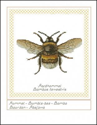 file-4b20ec30f246f (311x400, 81Kb)