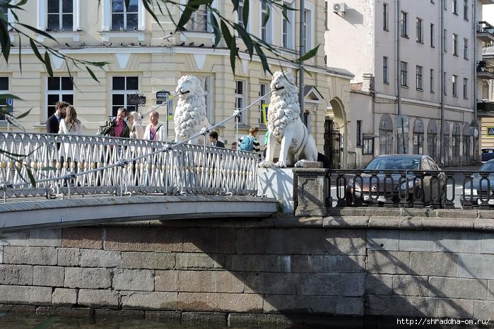 Питер, Львиный мост 2015 (1) (700x466, 344Kb)