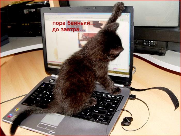 http://img0.liveinternet.ru/images/attach/c/9/126/116/126116596_9446218.jpg