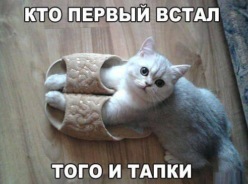 ВСТАВКА/5599153_5oUSzpnEo9Q_1_ (492x364, 32Kb)