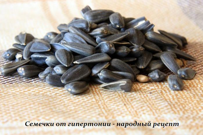 5365358_Semechki_ot_gipertonii__narodnii_recept (700x464, 490Kb)