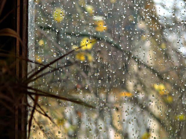 Картинки мрачная осень дождь