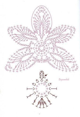 Цветы ОРХИДЕИ крючком. Схемы (2) (341x500, 129Kb)