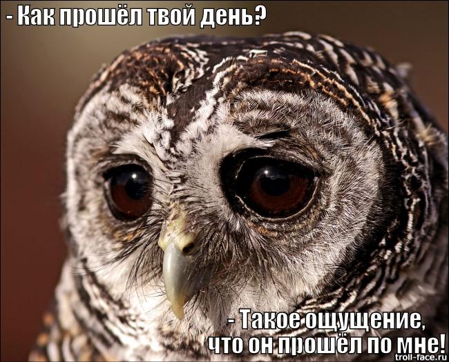 3180456_vapva (650x525, 175Kb)