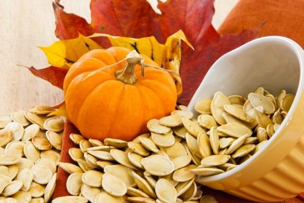 тыквенные семечки/3407372_pumpkin6 (600x400, 88Kb)