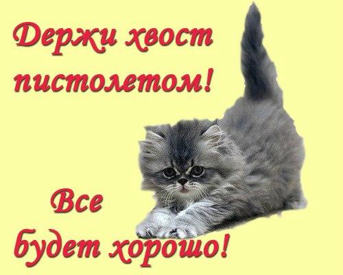 http://img0.liveinternet.ru/images/attach/c/9/126/199/126199362_x_f8c0327b.jpg