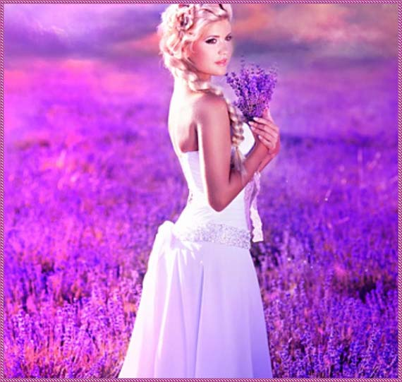 girl_in_the_lavender_field_white_lovely_1920x1080_hd-wallpaper-1746139 (570x541, 71Kb)
